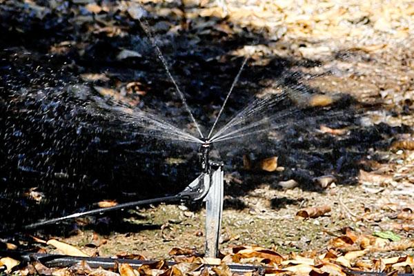 Micro sprinklers